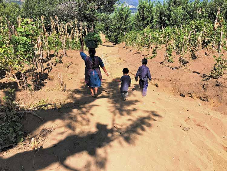 Family walking down hill