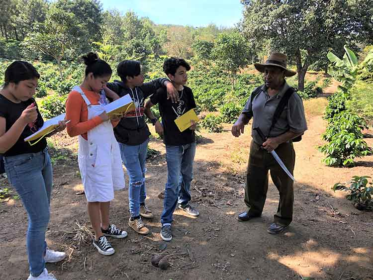 Tour of Guatemalan coffee farm