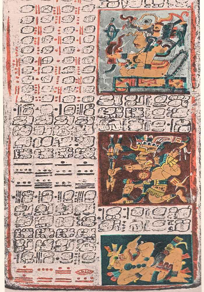 Mayan scroll