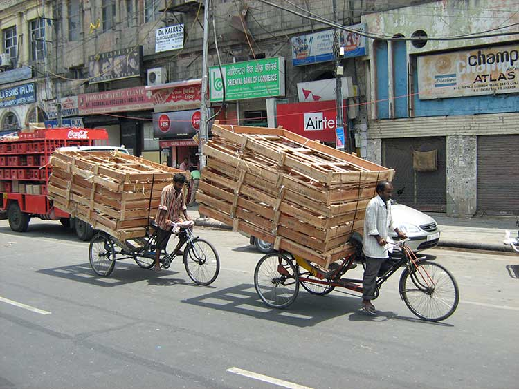 Men on bikes hauling wood