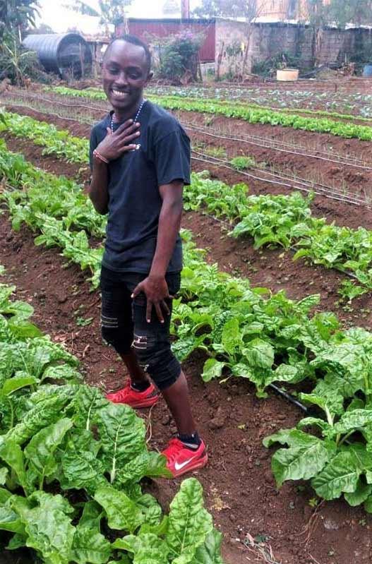 Mwanzia