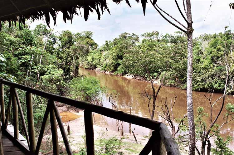 Tahuayo river